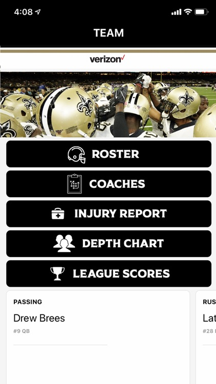 New Orleans Saints screenshot-3