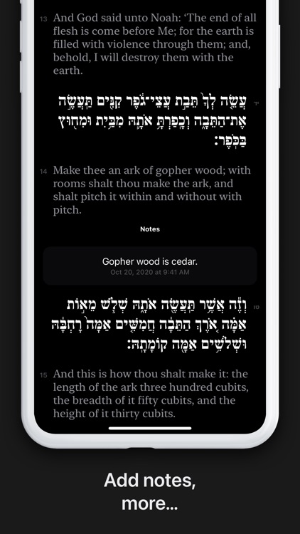 Shnayim screenshot-3