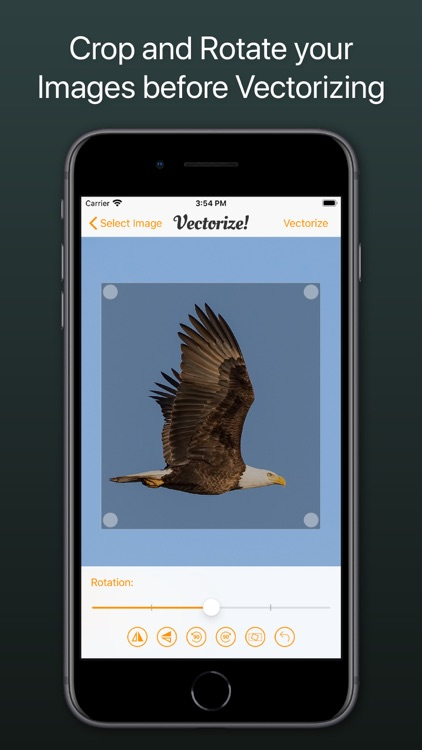 Vectorize! screenshot-3