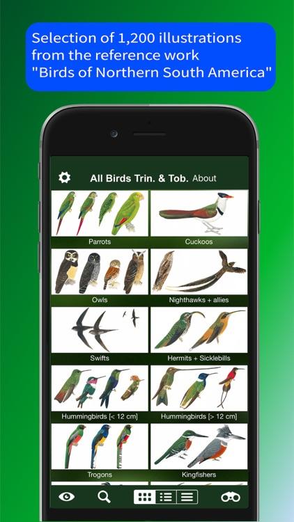 All Birds Trinidad and Tobago screenshot-5