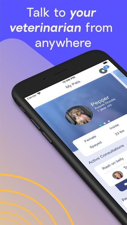 TeleVet - Your Virtual Vet