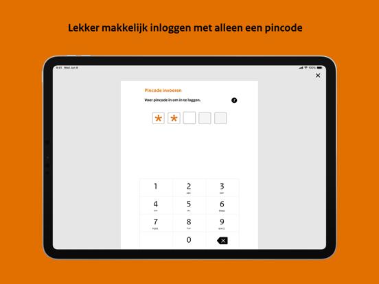 DigiD iPad app afbeelding 3