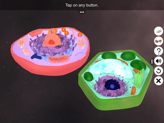 Prokaryotic & Eukaryotic cell screenshot 10
