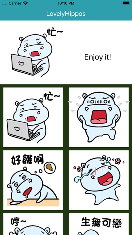 daily life of lovely Hippos