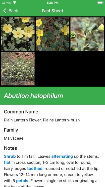 Plants Fungi South Western NSW screenshot-5