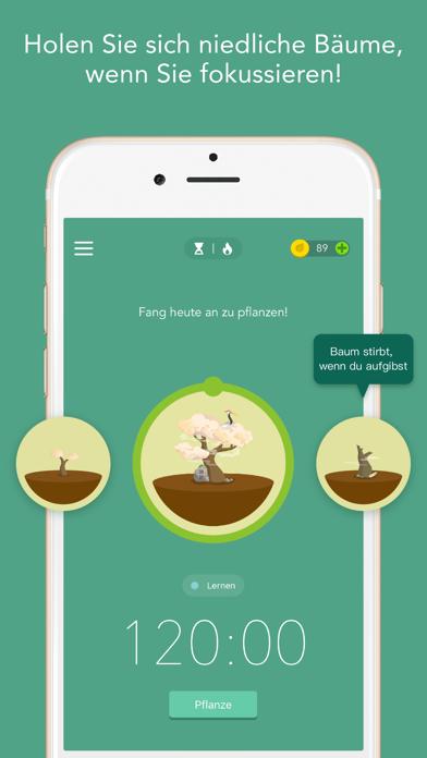 Forest - Bleib fokussiertScreenshot von 2