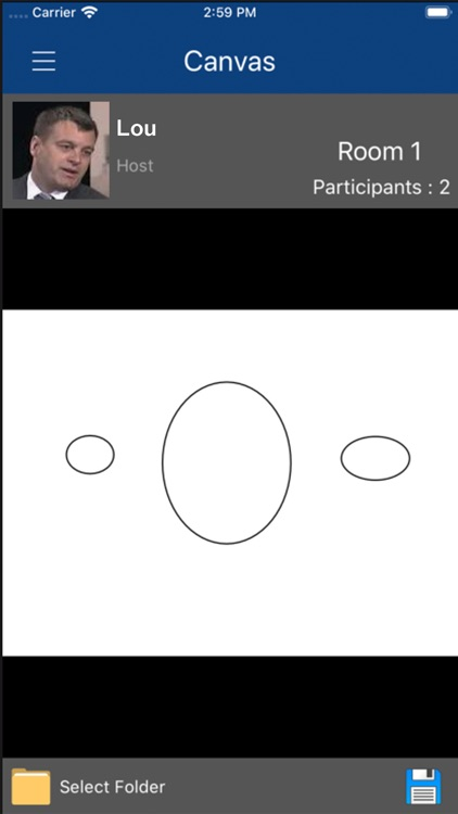 Virtual Meeting Room (VMR) screenshot-6