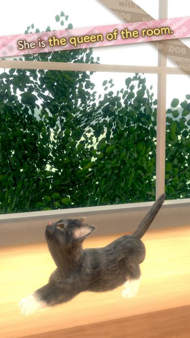 with My CAT screenshot 2