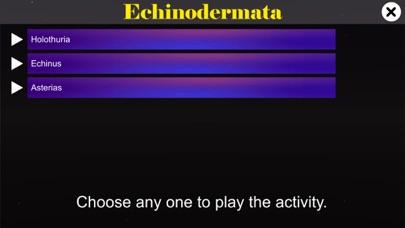 Echinodermata screenshot 2