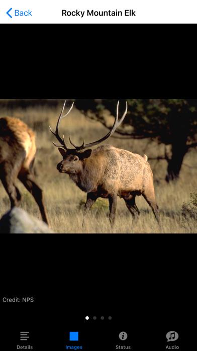 Rocky Mountain NP Field Guide Screenshots