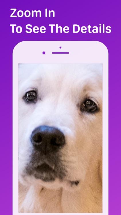 Pet Monitor VIGI screenshot-5