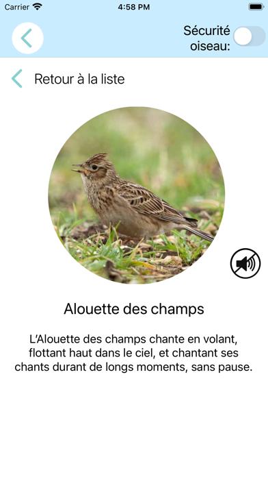 CuiCuiMatique chants d'oiseaux