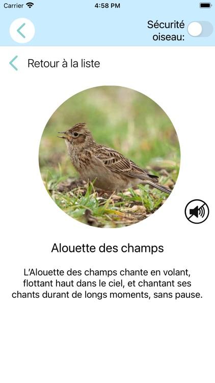 CuiCuiMatique chants d'oiseaux screenshot-5