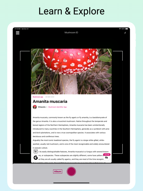 Mushroom Identifier - Fungi Id screenshot 9