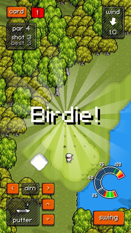 Pixel Pro Golf screenshot-2