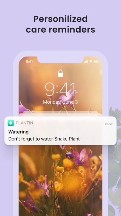 PlantIn: Plant Identifier screenshot 6