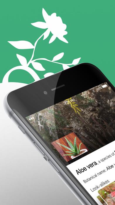 Plant Identifier - WhatPlant screenshot 1