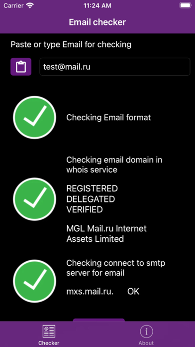 EmailChecker screenshot 4