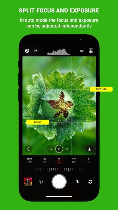 Chromatica camera Screenshots