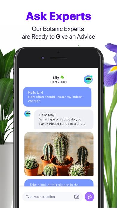 Lily - Plant Identifier screenshot 3