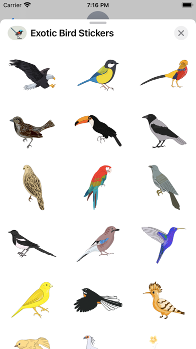 Exotic Bird Stickers screenshot 2