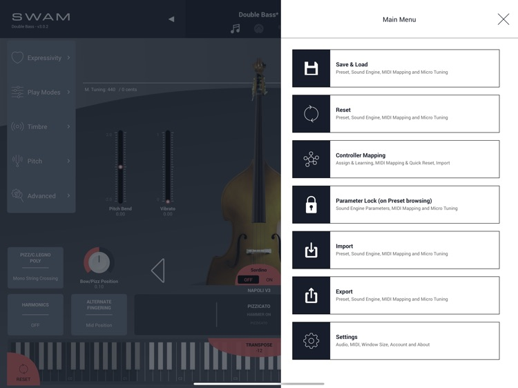 SWAM Double Bass screenshot-6