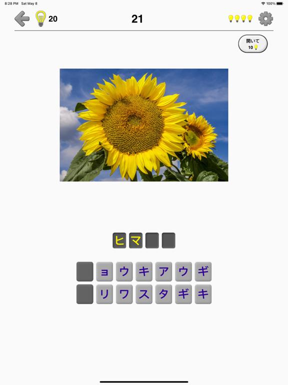花 - 美しい植物についての植物のクイズのおすすめ画像1