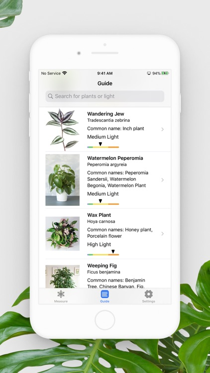 Plant Light Meter screenshot-5