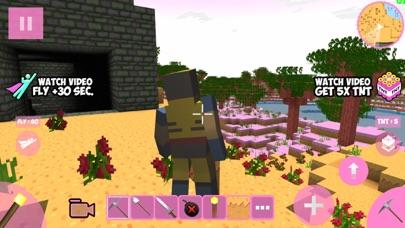 Candy Craft! screenshot 2