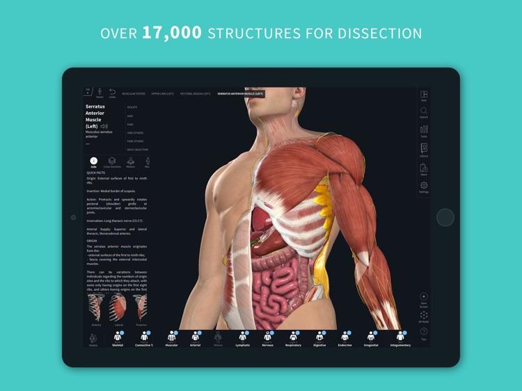Complete Anatomy 2022