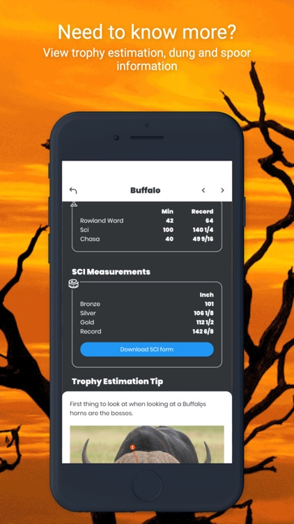 International Hunters screenshot-3