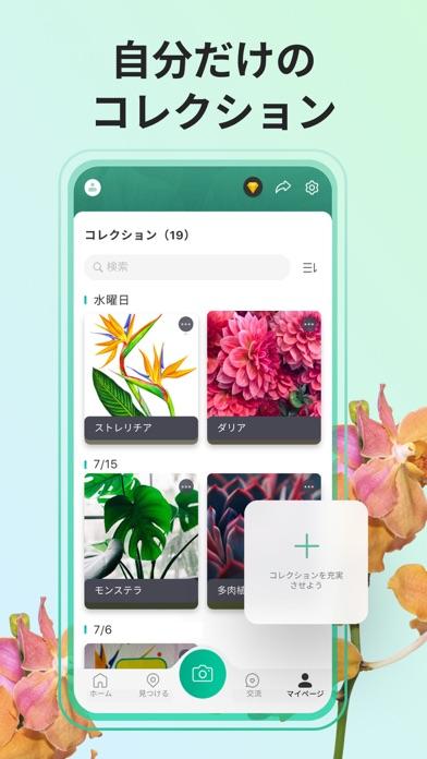 PictureThis:撮ったら、判る-1秒植物図鑑 ScreenShot5
