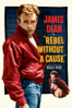 Nicholas Ray - Rebel Without a Cause  artwork