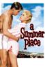 Delmer Daves - A Summer Place  artwork
