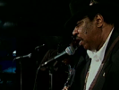 Hand Me Down My Walking Cane - Magic Slim