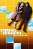 Michel Gondry - Eternal Sunshine of the Spotless Mind  artwork