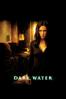 Walter Salles - Dark Water  artwork