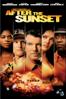 After the Sunset - Brett Ratner