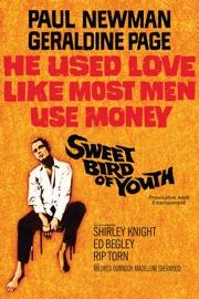 Sweet Bird Of Youth 1962