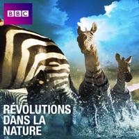 Télécharger Révolutions dans la nature Episode 6