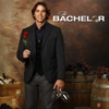 The Bachelor, Season 16 wiki, synopsis