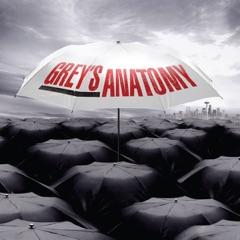 Grey's Anatomy, Staffel 6