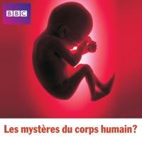 Télécharger Les mystères du corps humain Episode 5