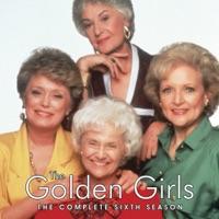 Télécharger The Golden Girls, Season 6 Episode 24