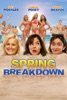 icone application Spring Breakdown