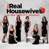 The Real Housewives of New York City, Season 3 wiki, synopsis