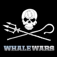 Télécharger Whale Wars, Series 1 Episode 1