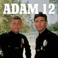 Télécharger Adam 12, Season 1 Episode 16