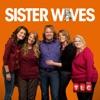 Sister Wives, Season 5 wiki, synopsis