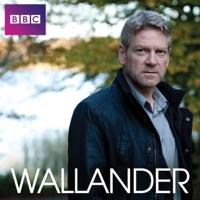 Télécharger Wallander, Series 3 Episode 2